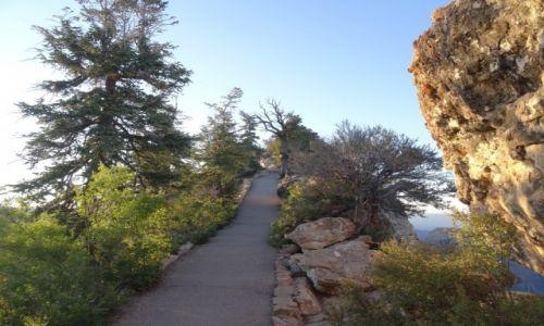 USA / Arizona / Grand Canyon / Grand Canyon - droga na Bright Angel Point