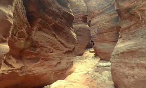 Zdjecie USA / Utah / Vermilion Cliffs / Wire Pass