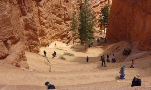 USA / Utah / Park narodowy Bryce Canyon / I gęsiego w dół
