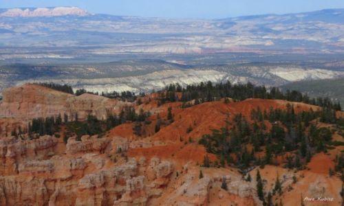 USA / Utah / Park narodowy Bryce Canyon / Skały i skały, aż po horyzont