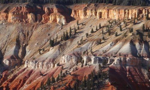 Zdjecie USA / - / Utah NP / Kocham czerwone skały: CEDAR BREAKS 2