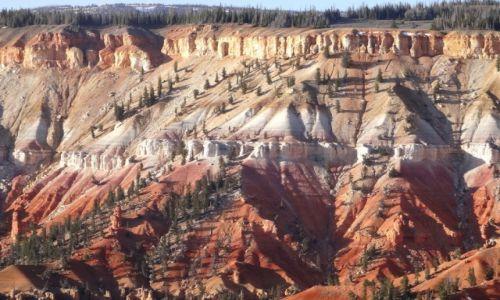 Zdjecie USA / UTAH / Cedar Breaks NP, 3000m .npm. / Kocham czerwone skały: CEDAR BREAKS 3