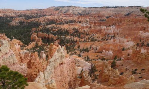 Zdjecie USA / Utah / Bryce NP / Kocham czerwone skały: Ten wspaniały BRYCE