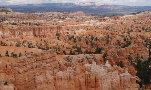 Zdjecie USA / Utah / Bryce NP / Kocham czerwone skały: Ten wspaniały BRYCE 2