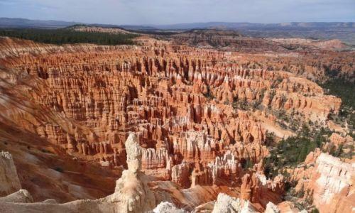 USA / Utah / Bryce NP / Kocham czerwone skały: BRYCE tzw. Amfiteatr