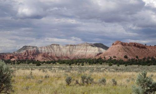 Zdjęcie USA / Utah / Grand Staircase escalante / Escalante - będzie burza
