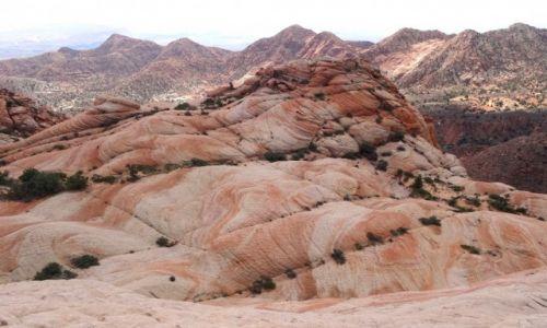 Zdjęcie USA / Utah / Yant Flat Candy Cliffs / Yant Flat w cieniu