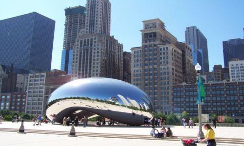 Zdjęcie USA / IL. / CHICAGO / Fasolka