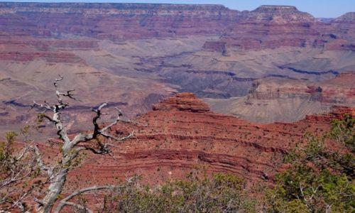Zdjecie USA / Arizona / Grand Canyon / Grand Canyon