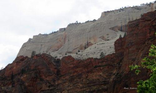 Zdjecie USA / Utah / Park narodowy Zion / Prawie jak WZ-tka ;)