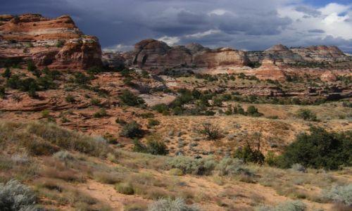 Zdjęcie USA / Usa / Utah / Gdzieś na  Kalifornijskim Szlaku