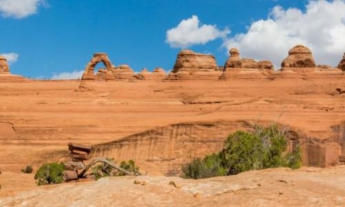 Zdjęcie USA / Utah / Arches NP / Dwa łuki