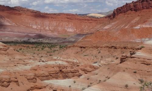 Zdjecie USA / Utah / Old Paria  / Kocham czerwone