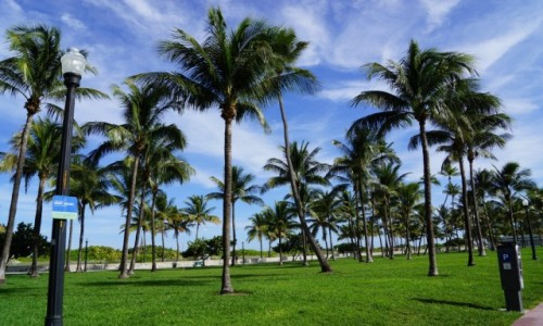 Zdjecie USA / Floryda / Ocean Drive / Miami