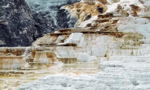 Zdjecie USA / Wyoming / Park Narodowy Yellowstone / Tarasy trawerty