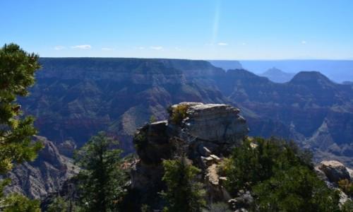 Zdjecie USA / Arizona / Park Narodowy Wielkiego Kanionu / Grand Canyon No