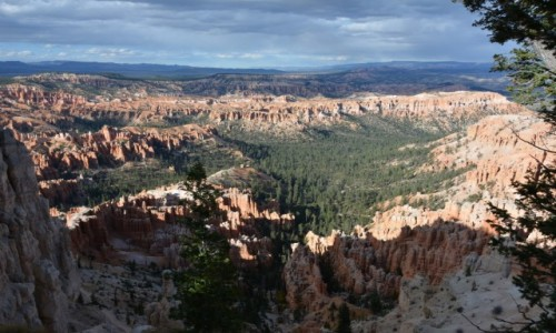 Zdjecie USA / Utah / Park Narodowy Kanionu Bryce / hoodoo