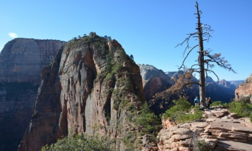 USA / Utah / Zion National Park / Angel's Landing