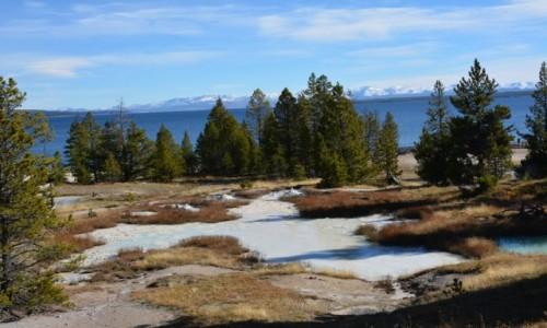Zdjecie USA / Wyoming / Park Narodowy Yellowstone / na mega wulkanie...