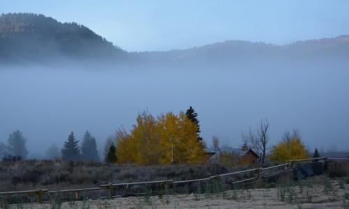 Zdjecie USA / Wyoming / Park Narodowy Yellowstone / aura tajemniczości...