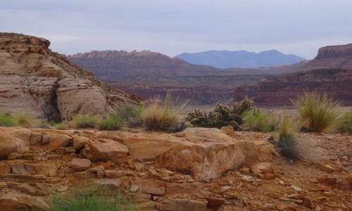 Zdjęcie USA / Utah / Escalante / Krajobrazy Escalante