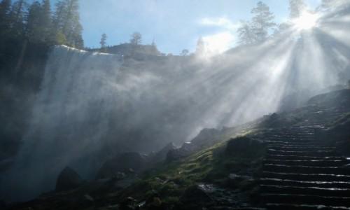 Zdjecie USA / Kalifornia / PN Góry Sierra Newada / Mgła