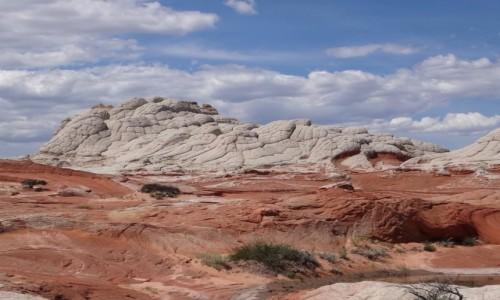Zdjecie USA / Arizona / Vermilion Cliffs / Niepowtarzalne WHITE POCKET