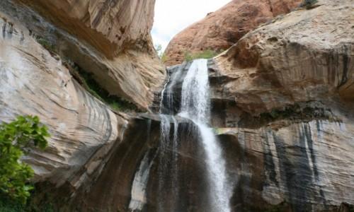 Zdjecie USA / Utah / Canyons OF escalante / wodospad