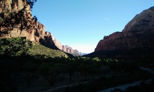 Zdjecie USA / Utah / Syjon Park Narodowy / Czerwone góry