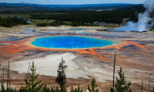 USA / Wyoming / Yellowstone / Grand Prismatic Spring