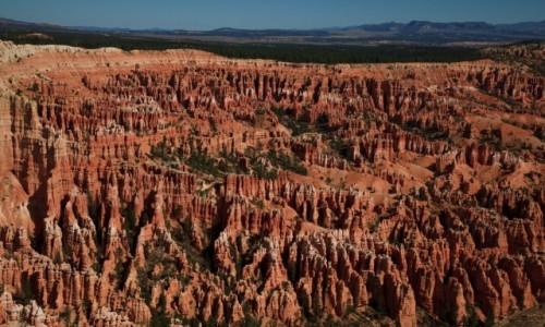 Zdjecie USA / Bryce Canyon / Bryce Canyon / Bryce Canyon