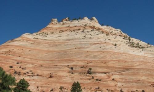 Zdjecie USA / Utah / Zion National Park / Zion