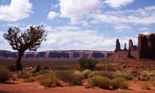 Zdjęcie USA / Arizona / Dolina Monumentów / Drogą pośród pomników przyrody