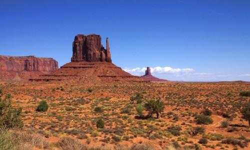 Zdjecie USA / Arizona / Dolina Monumentów / West Mitten Butte