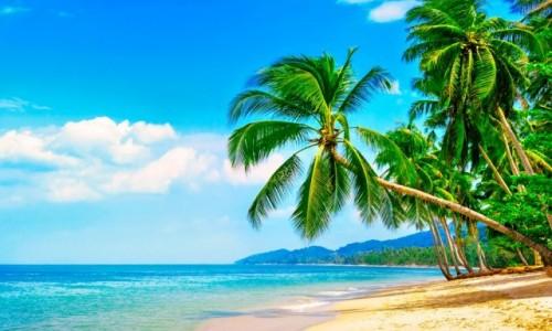 Zdjęcie USA / Hawaje /    / Hawaje plaża