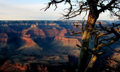 Zdjecie USA / Arizona / Grand Canyon / No cóż, a jednak szczęka mi opadła.
