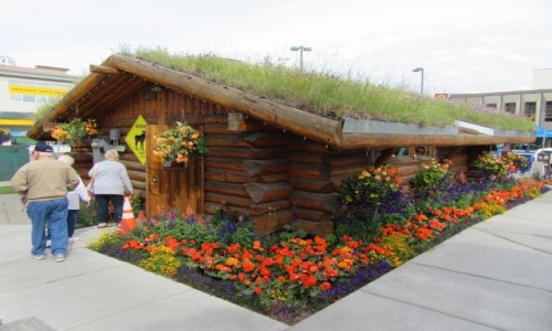 Zdjęcie USA / Anchorage / nchorage /    Anchorage - Alaska
