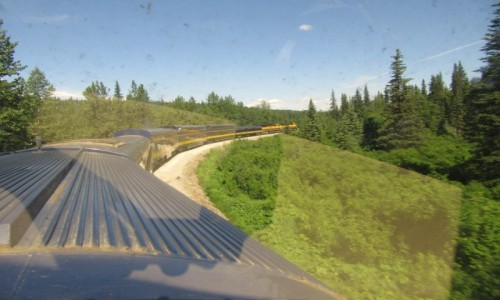 Zdjecie USA / Alaska / Alaska / Alaska. Przejazd z Anchorage do Fairbanks