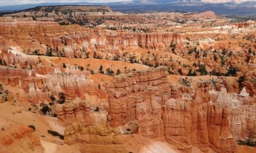 Zdjecie USA / Utah / Park Narodowy BRYCE / Zachwyt bez końca