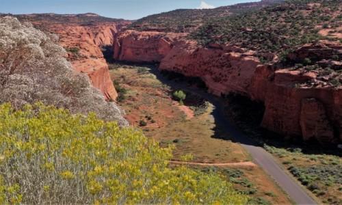Zdjecie USA / Utah / Escalante / Burr Trail Road - początek