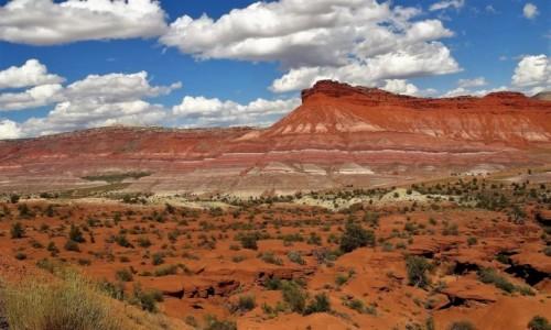 Zdjecie USA / Utah / W kanionie rzeki Paria / OLD PARIA