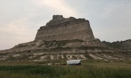 Zdjecie USA / Nebraska  / Nebraska  / Wśród dzikich traw