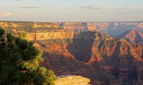 Zdjecie USA / Arizona / North Rim / Jak dobrze wstać skoro świt...