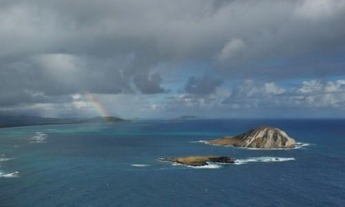Zdjecie USA / Hawaje / Honolulu - okolice / relaks egzotyczny
