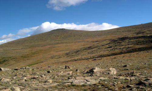 Zdjęcie USA / brak / Kolorado / tundra na wys. 3,7 km