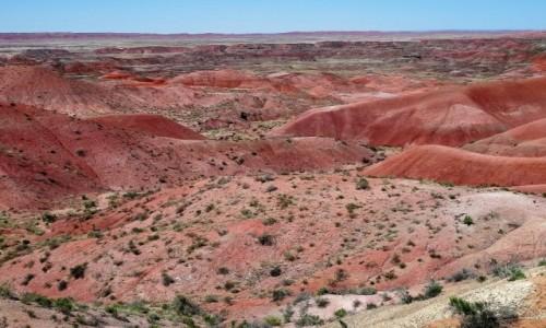 USA / Arizona / Malowana Pustynia / Pięknie, różowo...