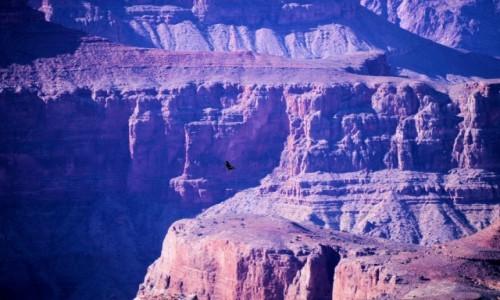 USA / Arizona / Wielki Kanion / South Rim