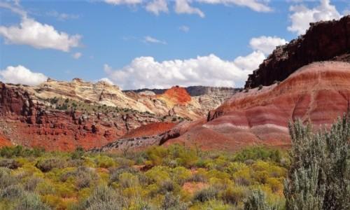 USA / Utah / Kanion Paria / Kolorowo, czyli pięknie