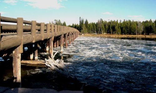 Zdjecie USA / brak / Wyoming / kra na jeziorze Yellowstone