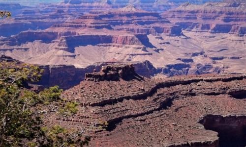 USA / Arizona / Grand Canyon, strona południowa  / Wielki Kanion rzeki Kolorado